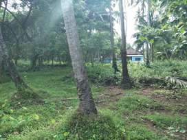 NA plots available in Cuncolim, Bali, Padi close to Highway.