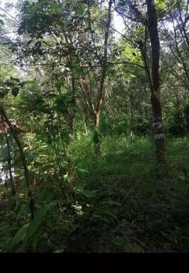 127 acre land for sale-
