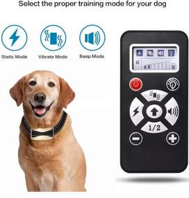 Dog training Collar A+ trainer UK imported