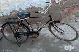 Koi job nahi hai   cycle bikau hai