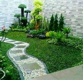 Jual rumput taman dan menjual macam2 tanaman hias