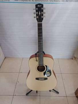 Gitar Akustik Cort Medium Grover