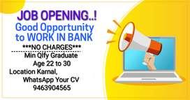 Bank Job Opening in Karnal