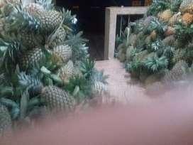 PINEAPPLE WHOLESALE ആയി കൊടുക്ക പെടും (KG/37രൂപ )