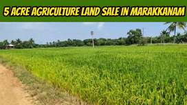 5 Acre Agriculture land sale in Marakkanam 2 Bore well available