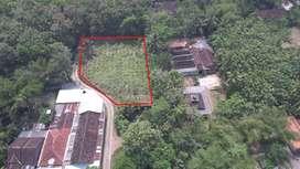 Dijual Tanah di Salamerjo, Sentolo, Kulon Progo Yogyakarta