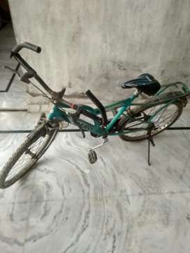 Afro  bicycle 18 inches