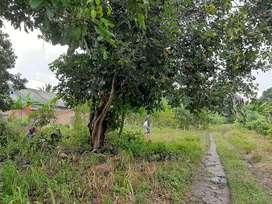 Tanah dijual kavlingan lebar prabumulih