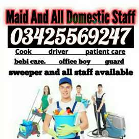 cook sweeper office boy all kind staff
