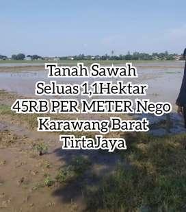 Tanah SAWAH 1,1 Hektar ,Karawang TirtaJaya