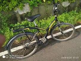 Cycle rockey