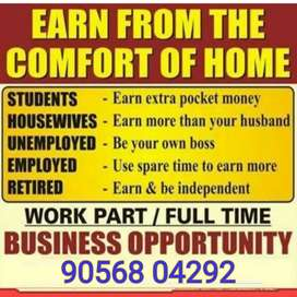 The Best Source of Extra Income in India?