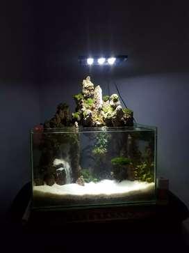 Jasa pembuatan semi palud-aquarium