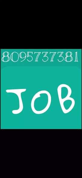 Jobs for MNC company