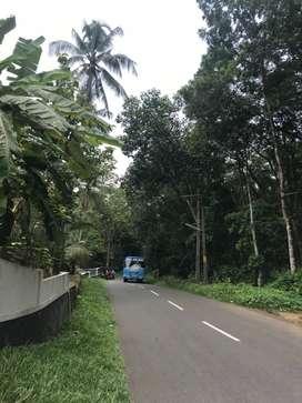 VERY CHEAP 3 acre land at Bharananganam Pala Kottayam, Poonjar, Ettu