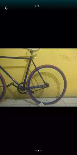 Sepeda warna biru dewasa