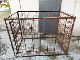 Big size cage
