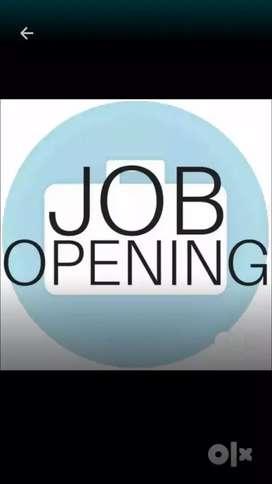 urgent vacancy computer operator