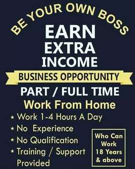 EARN EXTRA INCOME  WITHOUT DISTRUB UR CURRENT PROFESSION