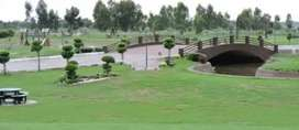 43 Akar Agriculture Land for Sale Yearly Income Rs. 30 lac Near Kasure