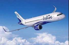 Apply Fast to Join indigo airline industry 8th ,10th, 12th,graduated,