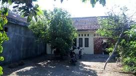 Rumah Siap Huni Kadirojo Jalur Truck & Bus - Cocok Untuk Gudang