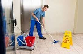 Urgently need House keeping staff