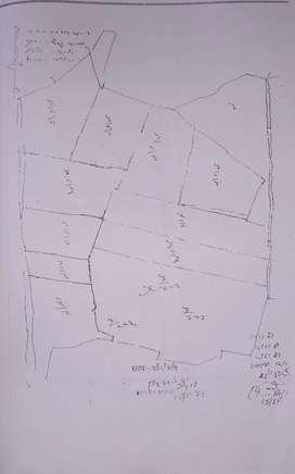 1956 Gaj plot