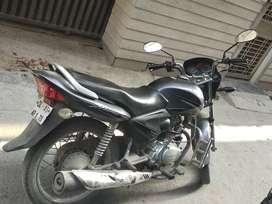 Shine 125cc