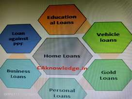 Provided all types of loans.