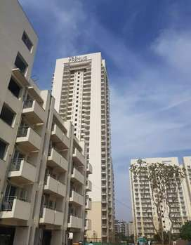 1 RK fully furnished for Sale in DLF Primus Sec  82 Gurgaon