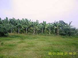 PPA approved, 6 vacant plots clear documentation/title