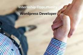 Internship Wordpress Developer