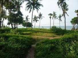 Tanah Tepi Pantai LUAS & CANTIK, Kota Kupang