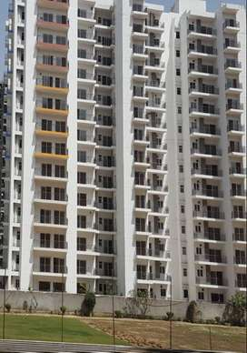 Maxblis White House gives you 2BHK ready to move in flat for sale