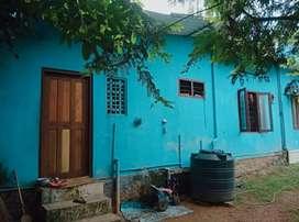 *NEW PRICE* 13 cent land with medium house