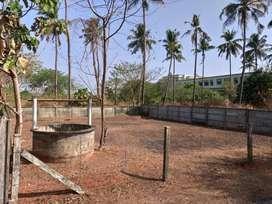 6 cents square plot in Pottore Thrissur