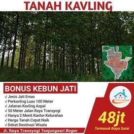 Dijual tanah 100m gratis pohon jati emas & surat 48juta