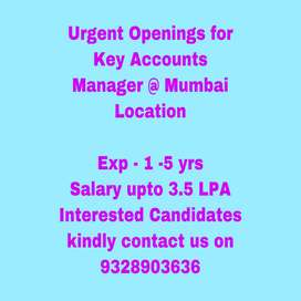 Key Accounts Manager