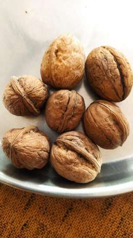 Organic Walnut available...