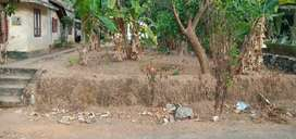 Plot for sale at pooyappally
