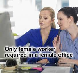 Computer Operator in a Female Office - Only Female worker required