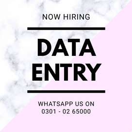 Part time with daily & weekly payout – Multiple data entry job