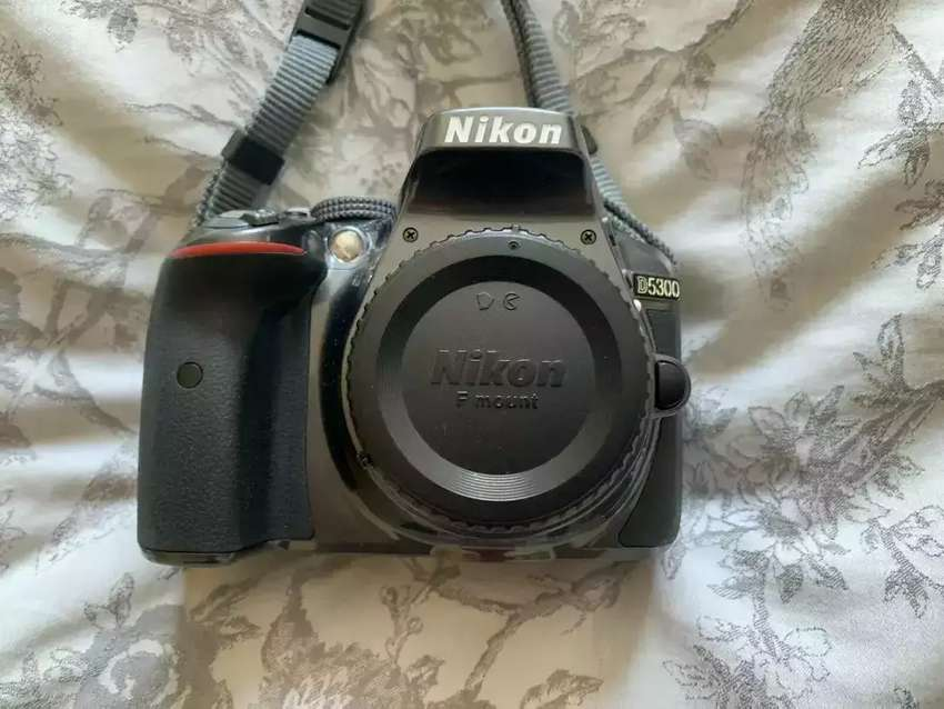 Nikon D5300 with 50mm 1.8  lens and All kit 0