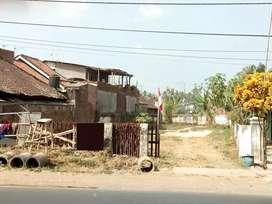 Tanah Murah 0 Jalan Raya Sumber Pasir, Cocok Untuk Usaha & Gudang