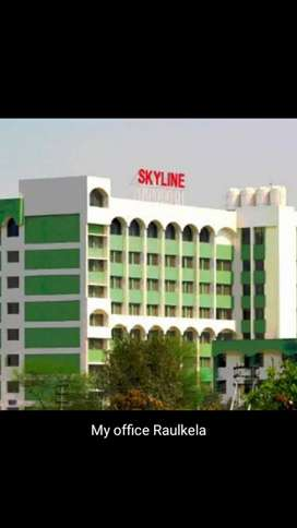 Skyline Associate Group of Company Rourkela