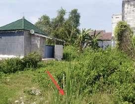 Medayu Utara / Medokan Ayu Tambak Sawah Wonorejo Selatan Indah Pandugo