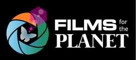 Freelance Movie Editor