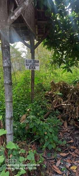 Tanah kosong dijual