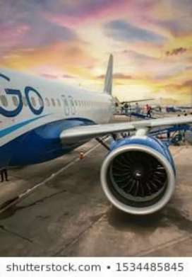 INDIGO AIRLINES INVITES FOR AIRPORT WORK APPLY FAST